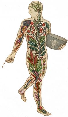 person with plants, illustration by Katie Scott