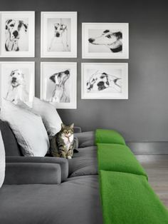 Gray Ikea chaises dressed up with green blankets and great charcoal dog sketches dress up the movie area