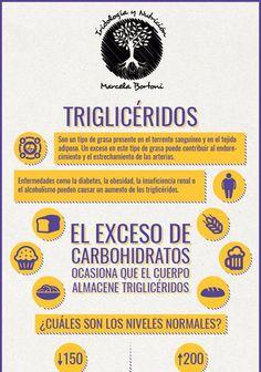 Después de tomar una comida alta en carbohidratos las sangre se carga de triglicéridos, y no vuelve a su composición habitual hasta pasadas 2 horas. De manera ocasional esto no supone un problema para la salud, pero si el consumo de carbohidratos se convierte en un hábito, a la larga puede contribuir al endurecimiento y estrechamiento de las arterias. Enfermedades …