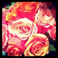 Orange sherbet roses