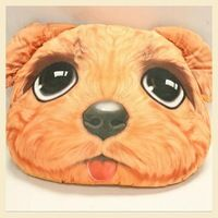 Description : ------------- Cute Cat Face Pillow With Core Adorable design cushion with soft texture! Perfect for gift and home decoration! Filling: PP Cotton. Decorating With Sticks, Cute Cat Face, Cat Pillow, Cushions, Pillows, Core, Plush, Teddy Bear, Texture