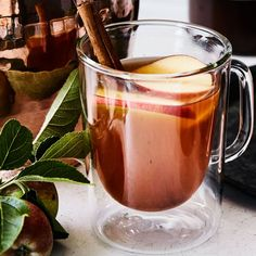 Mulled Spiced Cider | Williams-Sonoma