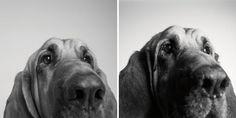 Cooper: 3 anos / 10 anos