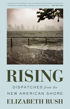 Rising -- endsickness and adaptive thinking | ClimateCultures - creative conversations for the Anthropocene