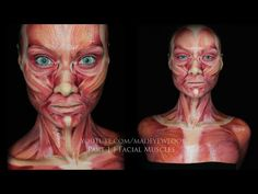 Muscle MAKEUP tutorial   Part 1 - YouTube....someone should have done this for the practical....