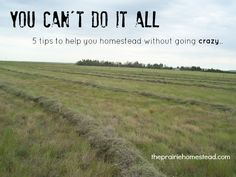 You Can't Do It All: 5 Tips for Staying Sane as You Homestead
