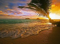 """""""Like"""" if you have ever gone to the beach early enough to see the sun rise while on vacation!  (Pictured: Lanikai, Hawaii)  #Travel #GoTravel"""