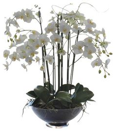 Phalaenopsis In Glass Flower Arrangement - traditional - Artificial Flowers - Winward Designs