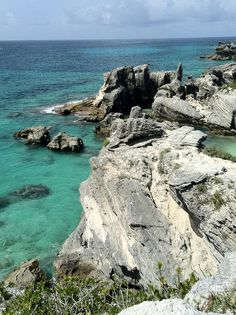 Horseshoe Bay Cliff, Bermuda - by @Mark Schulte