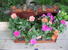 This is a funky little purse I got for 3 bucks at a yard sale. Just lo… :: Hometalk Beautiful Gardens, Beautiful Flowers, Backyard Retreat, Backyard Ideas, Flower Boxes, Flower Bag, Growing Plants, Garden Art, Garden Deco