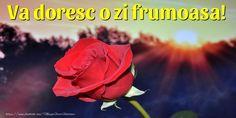 Va doresc o zi frumoasa! Quotes, Flowers, Plants, Facebook, Fotografia, Quotations, Plant, Royal Icing Flowers, Quote