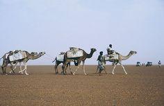 Mali    ...zieht sie an uns vorbei