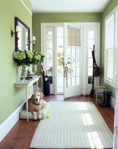 Elegant soft green foyer with a classic white front door. Get the look with Dunn-Edwards Shrubbery for your walls and Dunn-Edwards Soft Petals for your trim and front door. Cottage Entryway, Narrow Entryway, Entryway Ideas, Hallway Ideas, Small Entryways, Entrance Ways, Funky Home Decor, Entry Hall, Front Entry
