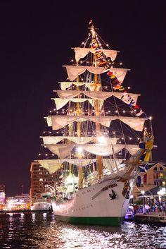 Sailabration - Baltimore Inner Harbor