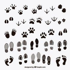 Pegadas sombras de animais e humanos
