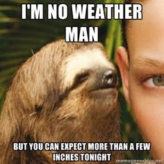 best+sloth+memes | sloth weather man tumblr funny pics the best meme funny pics funny ...