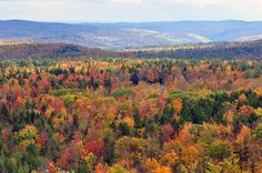 The 22 Most Unbelievably Colorful Places On Earth - Vermont in Autumn