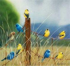Bird friends in meadow