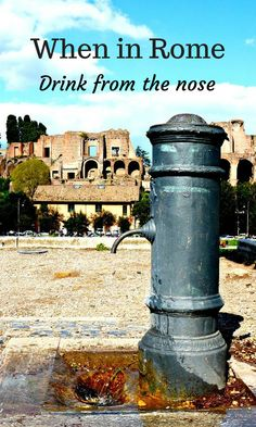 Some of the best fountains in Rome aren't the most famous. Remember - when in Rome, drink from the nose! You will find these quirky drinking fountains that are a point of pride for Italians. Find out how to drink from them while you are there (and not get wet!).  @venturists