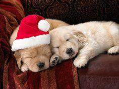 too tired to wait up for Santa