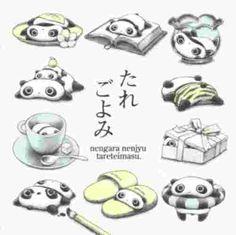 Tare Panda !! ♥ ♥ ♥