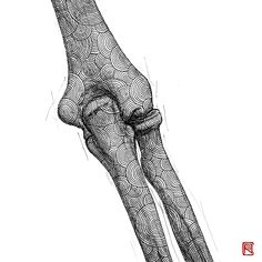 from Human Body Study Series by Body Study, Human Body, Anastasia, Anatomy, Bones, Body Art, Contemporary Art, Skull, Ink