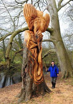 Guerilla Tree Sculptor in North Yorkshire Identified (is not Banksy) wood trees sculpture England Tree Sculpture, Sculptures, Art Beauté, Tree Carving, Art Japonais, North Yorkshire, Yorkshire England, Wooden Art, Land Art