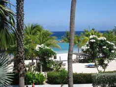 A room with a view.... Curacao! #travel, #Curacao, #Garden, #ocean