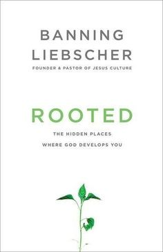 Rooted: The Hidden Places Where God Develops You by Banni... https://smile.amazon.com/dp/1601428405/ref=cm_sw_r_pi_dp_U_x_E7B6AbX4BMJBV