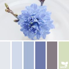 today's inspiration image for { flora tones } is by @hannievanbreda ... thank you, Hannie, for another beautiful #SeedsColor image share!