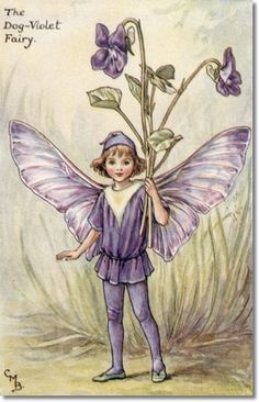 Cicely Mary Barker - Flower Fairies of the Spring - The Dog-Violet Fairy