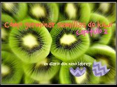 Cómo germinar semillas de kiwi || capítulo 2 || #diariodunnenolabrego - YouTube
