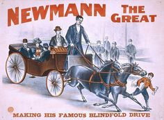 Newmann the Great Psychic Magic Magician 4of8 poster