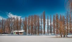 Slovakia, Park, Nitra: Sleep In The Snow on Flickr #PHOTOFRANO   I'm really excited about testing and using the new version of Photolemur3 Hdr, Sleep, Snow, Fine Art, Landscape, Wordpress, Photography, Outdoor, Outdoors