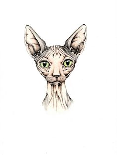 Hairless cat art print. 9x12 inches.