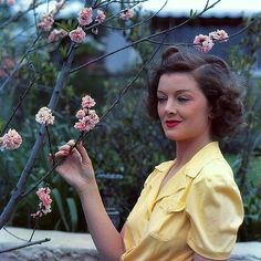Myrna Loy: Queen of Hollywood Golden Age Of Hollywood, Vintage Hollywood, Hollywood Glamour, Hollywood Stars, Classic Hollywood, Hollywood Icons, Myrna Loy, Classic Actresses, Classic Movies