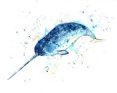 This print is a reproduction of my original painting of a narwhal, the unicorn of the sea! Printed on acid free uncoated fine art paper using professional inks.  The print is shipped in a heavy duty envelope to prevent bending.  All artwork is copyrighted by Lisa Whitehouse. Copyright and reproduction rights remain that of the artist. Artwork cannot be reproduced in any way.  Additional sizes available