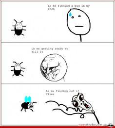Rage comics...LOL
