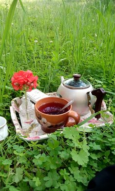 Coffee Time, Tea Time, Breakfast Tea, Good Morning, Mornings, Plants, Deco, Spring, Good Morning Wishes