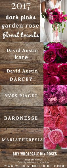 2017 Garden Rose BOUQUET trends! Your #1 source for DIY Garden Roses! www.weddingrosesdirect.com #gardenrosebouquet #diyflowers #davidaustin #bouquet #diybouquet #pinkroses #pinkgardenroses #fuchsiaroses