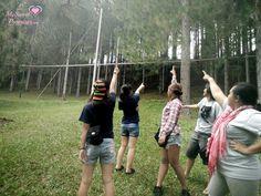 Bukidnon: fog and pine trees