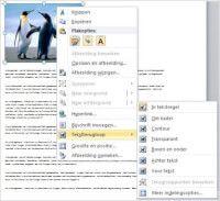 Een feestgids, trouwkrant of brochure maken in Word | Pc en Internet: Tips en tricks Internet, Tips, Counseling