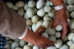 Maataloustuottajien etujärjestö MTK jatkaa kauppaketju Lidlin arvostelua… Lidl, Eggs, Breakfast, Food, Morning Coffee, Essen, Egg, Meals, Yemek