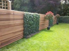 Contemporary fence with ivy