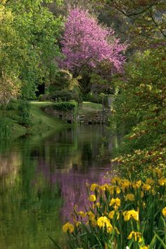Garden of Ninfa, Italy - Summer garden Most Beautiful Gardens, Beautiful World, Wonderful Places, Beautiful Places, Famous Gardens, Italian Garden, All Nature, Foto Art, Enchanted Garden
