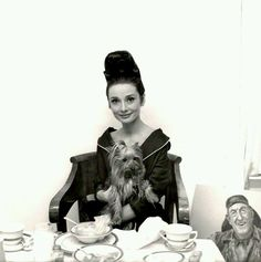 Audrey Hepburn and Assam photographed by Cecil Beaton during a photoshoot for My Fair Lady, 1964.