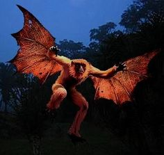 Orang-bati- Indonesian cryptid: an ape that has wings and can fly. According to local folklore they raided villages of infants and children and took them to a mountain to eat them.