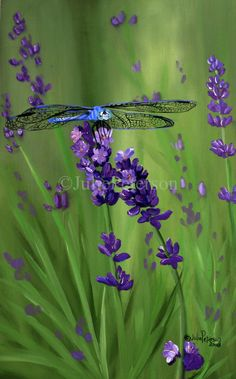 Dragonfly - Julie Peterson Oil Paintings (East Wenatchee, WA)