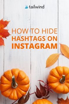 Hashtags are important for getting your content found on Instagram, but they're not always the prettiest - especially when you use all 30! Learn how to keep your hashtags hidden and your captions looking pristine HERE #InstagramTips #InstagramStrategy Instagram Marketing Tips, Instagram Bio, Social Media Tips, Hashtags, Content Marketing, Captions, Virtual Assistant, Business, Highlights