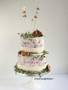 Marsispossu: naked cake